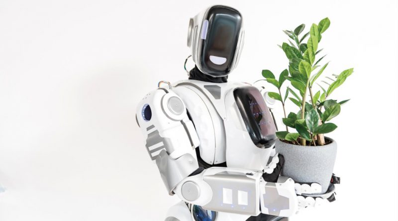 Chatbots y sistemas conversacionales